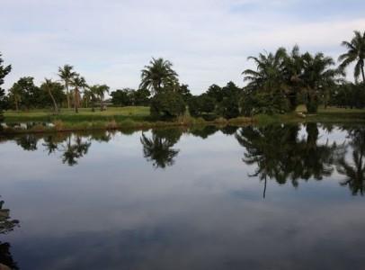 Lej Ferielejlighed i Bang Saen, Chon Buri